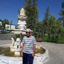 Владимир, 58 лет, Вольск