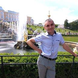 Роман, 41 год, Кашин