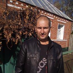 Sasha, 40 лет, Волчанск