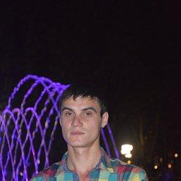 Сергей, 26 лет, Брянка