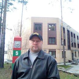 Сергей, 44 года, Пикалево