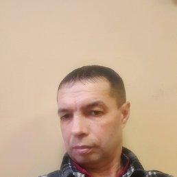 КОЛЯ, 48 лет, Ядрин