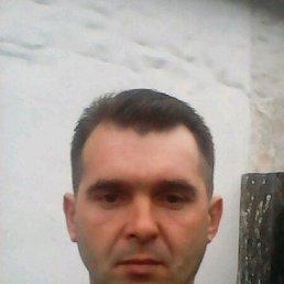 Виталий, 36 лет, Горловка