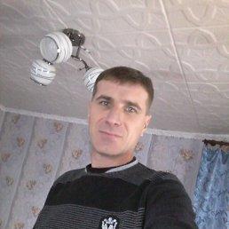Евгений, 43 года, Высокополье