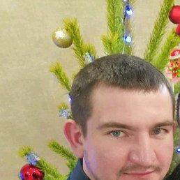 Андрей, 29 лет, Морозовск