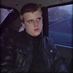 Владимир, 29 лет, Раменское