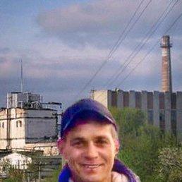 Николай, 43 года, Электрогорск