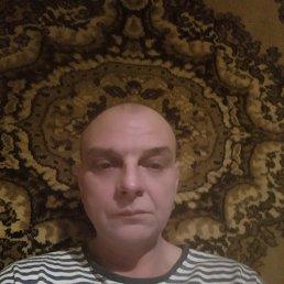 кот, 47 лет, Краснодон