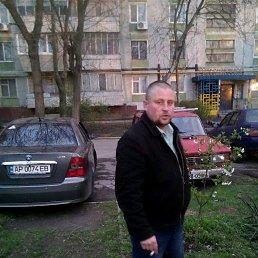 Андрей, 35 лет, Запорожье