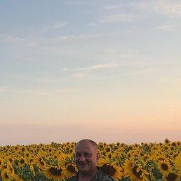 Алекс, 44 года, Донской
