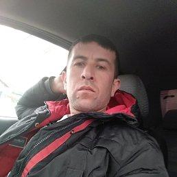Руслан, 33 года, Ярославль