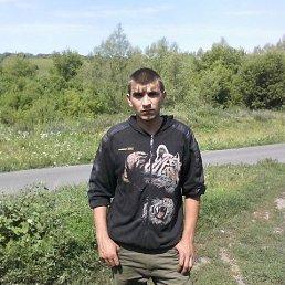 Андрей, 28 лет, Льгов
