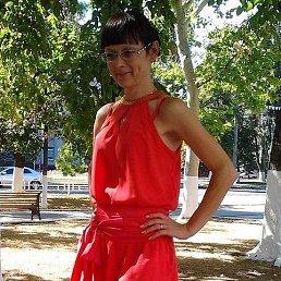 Наташа, 44 года, Херсон