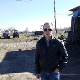 Александр, 17 лет, Колывань
