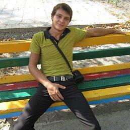 Сергей, 29 лет, Новороссийск