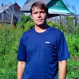Дмитрий, 35 лет, Нелидово