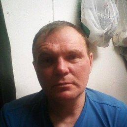 Александр, 42 года, Осташков