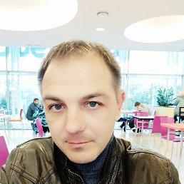 Константин, 39 лет, Сочи