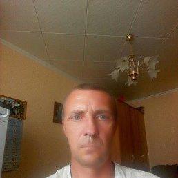 Андрей, 48 лет, Грязи