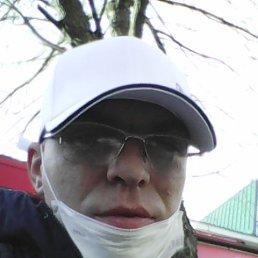 дима, 34 года, Десногорск