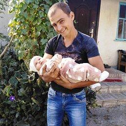 Сергей, 27 лет, Кременец