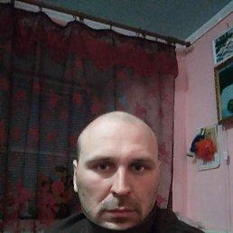 Саша, 29 лет, Долинская
