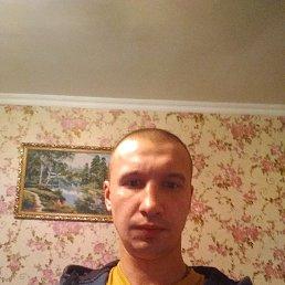 Александр, 28 лет, Ногинск