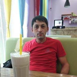 МагомедовШамильалиевич, 33 года, Самара