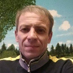 иван, 51 год, Ватутинки