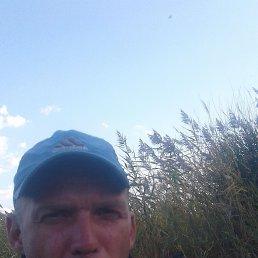 Данил, 38 лет, Саратов