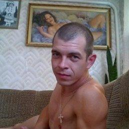 Сергей, 36 лет, Шатура