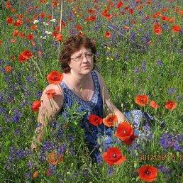 ЕЛЕНА, 53 года, Кировоград