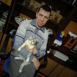 Владимир, 46 лет, Богородицк