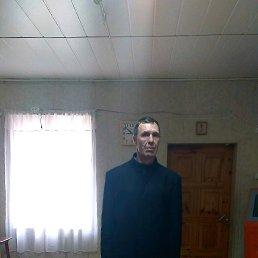 Владимир, 49 лет, Красногородск