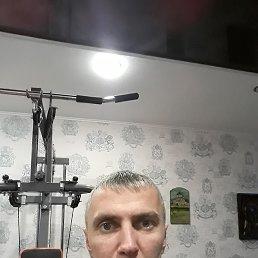 Сергей, 42 года, Тутаев
