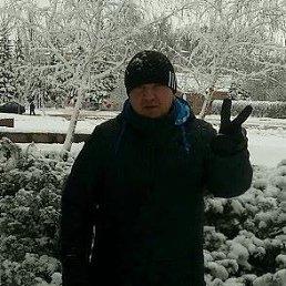 АЛЕКСАНДР, 43 года, Харцызск