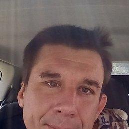 Андрей, 37 лет, Липецк