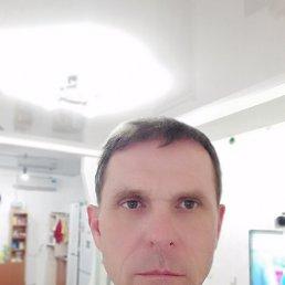 Александр, 54 года, Армавир