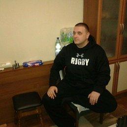 Алексей, 46 лет, Кировоград