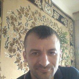 Тарас, 32 года, Луцк