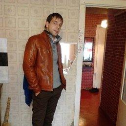 Андрей, 29 лет, Ярославль