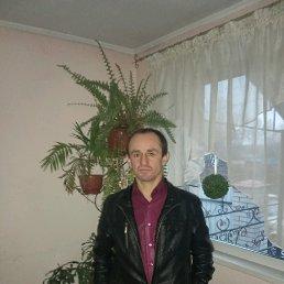 Сергей, 40 лет, Яготин