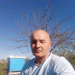 Александр, 54 года, Целина