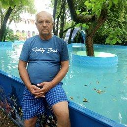 Геннадий, 60 лет, Сатка