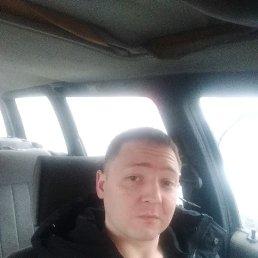 Денис, 31 год, Куровское