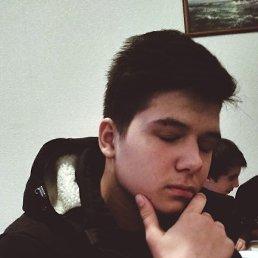 Никита, 23 года, Мелитополь