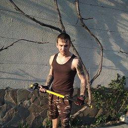 Kolya, 21 год, Виноградов