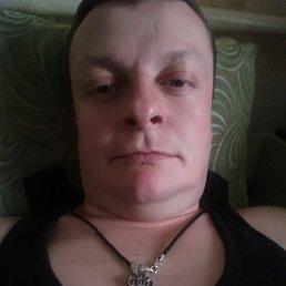 Глеб, 35 лет, Бердянск