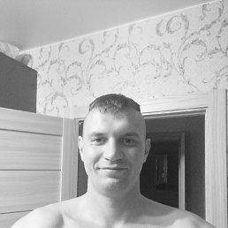 Сергей, 30 лет, Королев