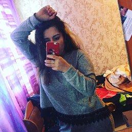 Карина, 19 лет, Гатчина